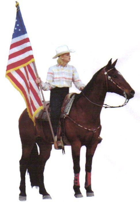 American Appendix Horse Association