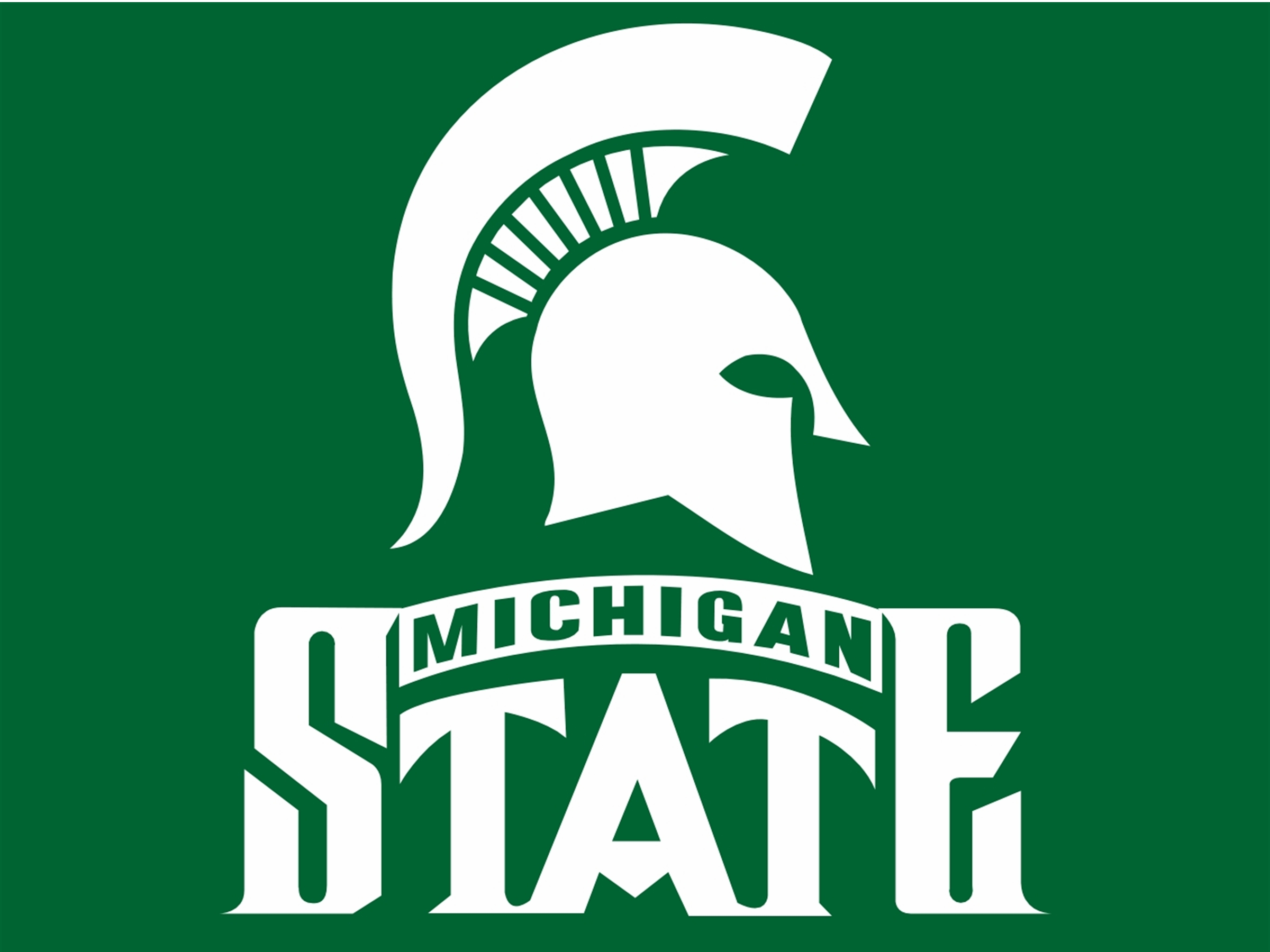 michigan state university spartan credit card payment login